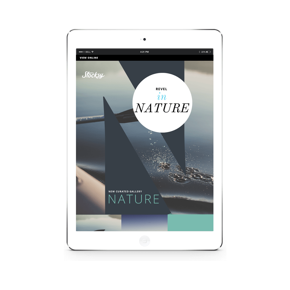 Nature Newsletter Template Concept